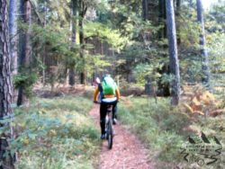Bikebuwe-Abschluss-2015-190