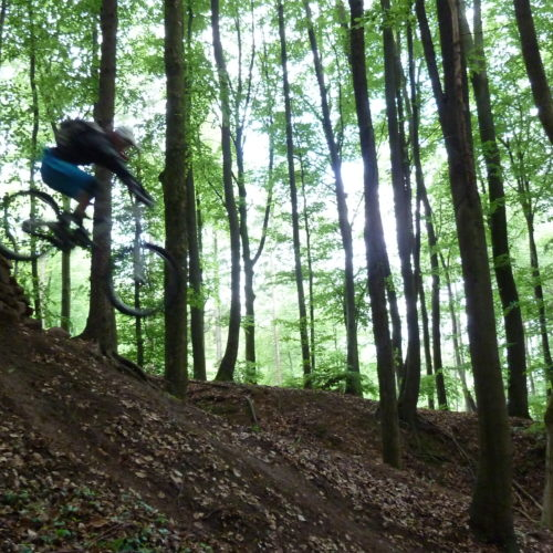 Freeride-Tour mit Mountainbike-Legende Richie Schley
